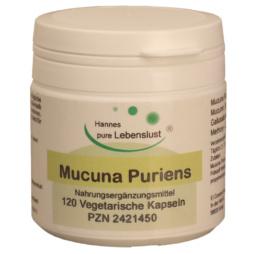 Mucuna Pruriens Kapseln (400mg - enthält 40% L- Dopa)