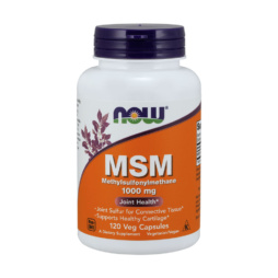 MSM Kapseln 1000 mg NOW Foods